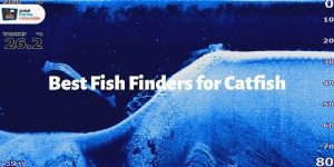 Best Fish Finders for Catfish